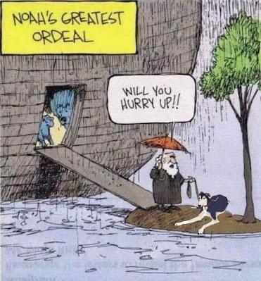 Noah Greyhound