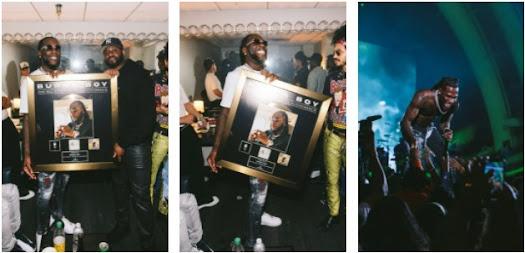 """""""Grammy Winner"""""""