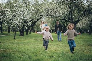 Primavera: Conheça a data de início e as principais características