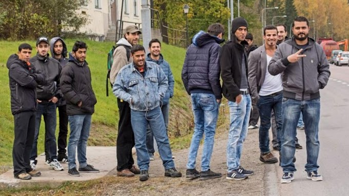 Csak az lehet iskolagondnok Svédországban, aki folyékonyan beszél arabul