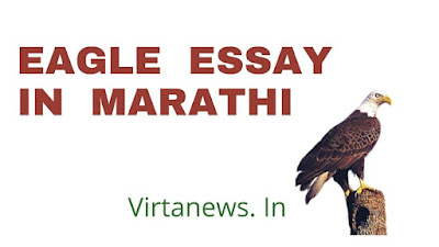 गरुड पक्षी वर मराठी माहिती निबंध |10 lines on eagle in Marathi