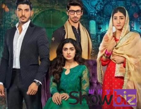 mohabbat chor di maine drama story