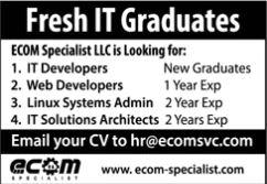 JOBS | Ecom Specialist IT Graduates