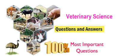 Veterinary Science Question and Answers