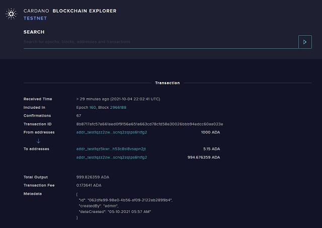 Confirmed transaction with metadata as seen in the Cardano blockchain explorer
