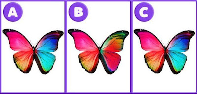 Okay, let's start with an easy one. Which picture is different from others?