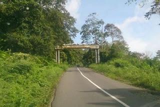 Taman Nasional Bukit Barisan Bengkunat Lampung