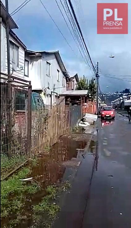 Osorno: desborde de un canal inunda domicilios con aguas servidas