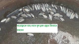 বায়োেফ্লকে মাছ চাষে মূল ফ্লক প্রস্তুত কিভাবে করবেন? Biofloc Fish Framing (পর্ব ১০)