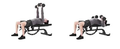 Dumbbell chest press, best full body strength workout