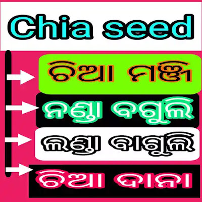chia seeds in odia