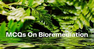 Bioremediation Mcqs