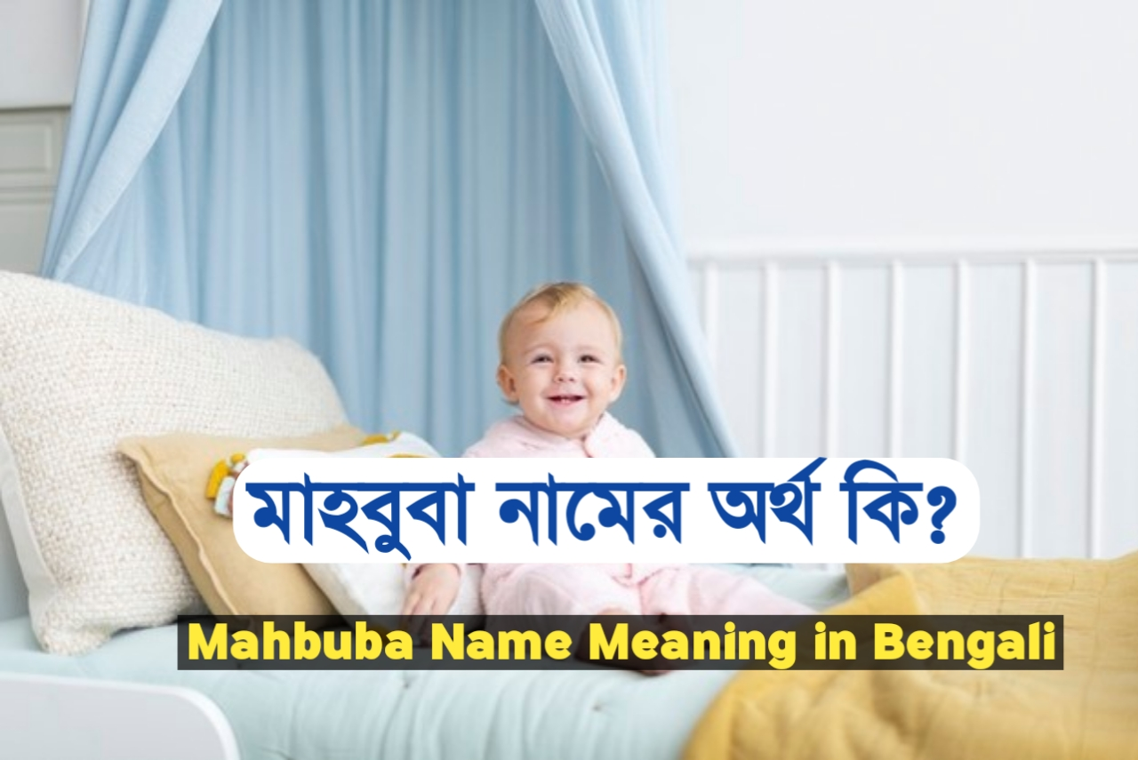 মাহবুবা শব্দের অর্থ কি ?, Mahbuba, মাহবুবা নামের ইসলামিক অর্থ কী ?, Mahbuba meaning, মাহবুবা নামের আরবি অর্থ কি, Mahbuba meaning bangla, মাহবুবা নামের অর্থ কি ?, Mahbuba meaning in Bangla, মাহবুবা কি ইসলামিক নাম, Mahbuba name meaning in Bengali, মাহবুবা অর্থ কি ?, Mahbuba namer ortho, মাহবুবা, মাহবুবা অর্থ, Mahbuba নামের অর্থ