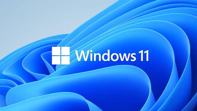 window 11
