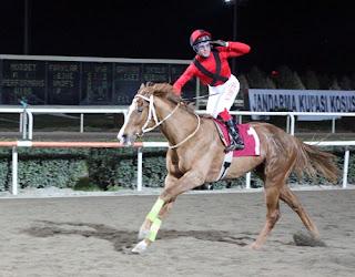 24 Ekim Sinan Sertaç Diyarbakır At Yarışı Tahminleri (TUTTU)