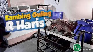 Delivery Kambing Guling Lembang Bandung, kambing guling lembang bandung, kambing guling lembang, kambing guling bandung, kambing guling,