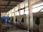 RPH Lubuk Buaya, Khusus Tempat Pemotongan Babi