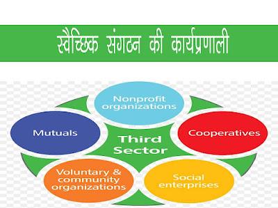स्वैच्छिक संगठन का गठन एवं कार्यप्रणाली |Working of Voluntary Organisation In Hindi