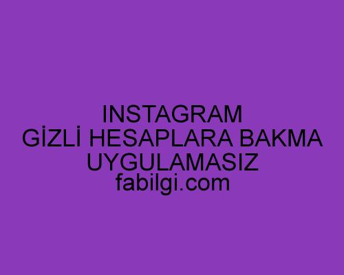Instagram Gizli Hesaplara Bakma Uygulamasız Site Ekim 2021