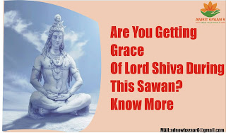 Are You Getting Grace Of Lord Shiva During This Sawan? Know More