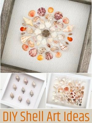 DIY Framed Sea Shell Art Ideas