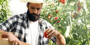 Şifalı Ot ve Bitki Yetiştiriciliği ile Para Kazanabilirsiniz