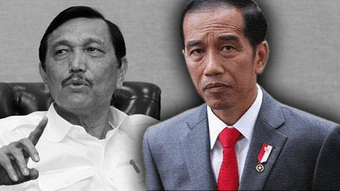 Pengamat Kuliti Penyebab Jokowi Hanya Mau Andalkan Luhut Seorang, Pantas Nurut Banget Begitu!