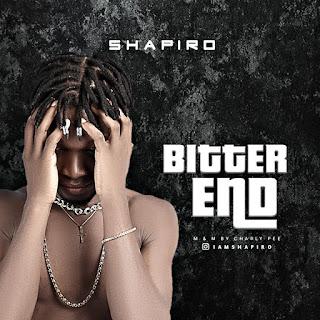 [Music] Shapiro - Bitter End