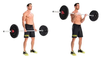 Barbell curl, full body strength training