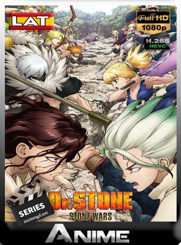 Dr Stone temporada 2  Latino [x265] HEVC HD [1080P] [GoogleDrive] DizonHD