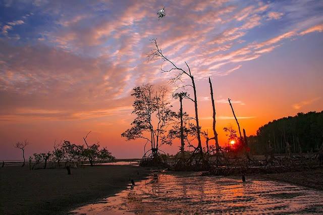 Pantai Di Selangor