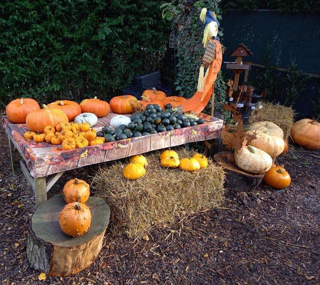 Pumpkins at a Farm Shop in Handforth, Cheshire