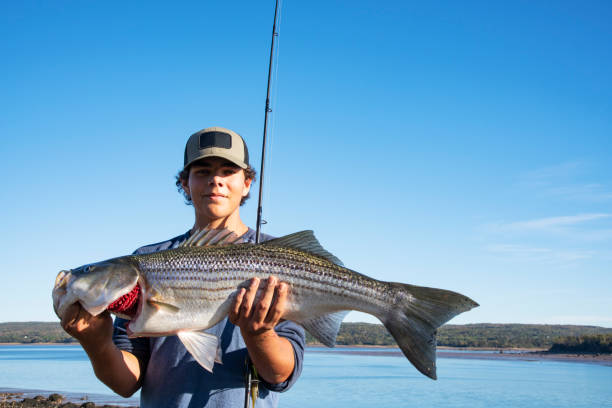 Striped Bass Fishing – With the Right Tackle