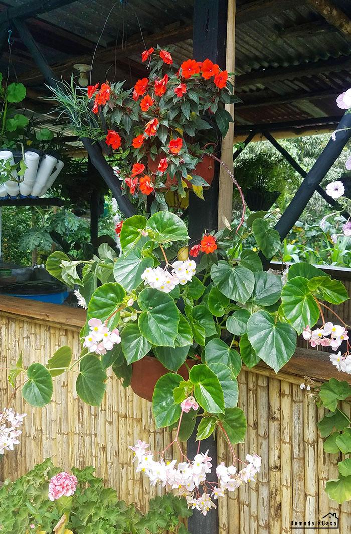 Bamboo flower house