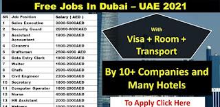 Dubai Job Requirements For Cheeky Monkeys Company, Latest Vacancies 2021