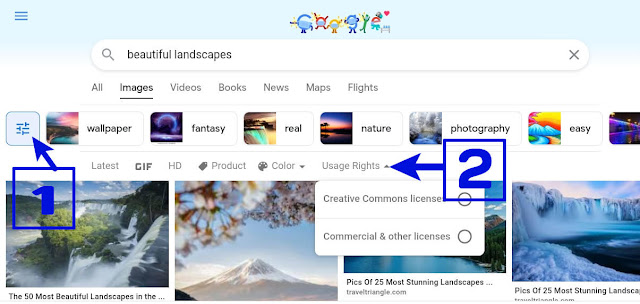 Search Image with usage rights