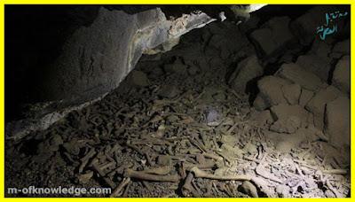 عظام داخل كهف أم جرسان البركاني في السعودية .. ما قصتها ؟!