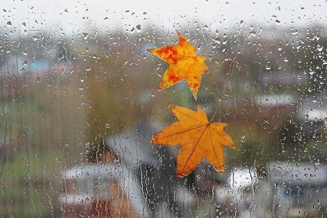 Погода на сьогодні: Жителям центральних і північних областей варто приготувати парасольки