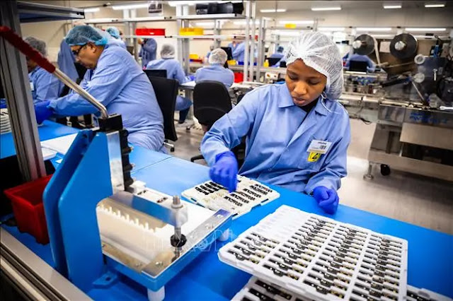 Employees check rapid testing kits for the SARS-CoV-2 virus at Ellume Medical Equipment Manufacturing Company in Brisbane, Australia, December 21, 2020. File photo: AFP