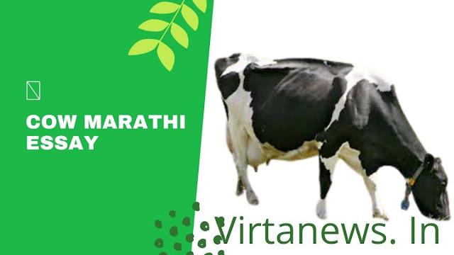 गाई वर मराठी निबंध 10 ओळी |10 lines on cow in Marathi