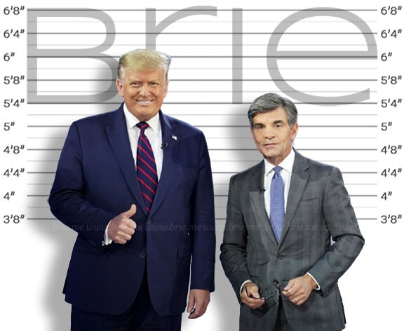 George Stephanopoulos height comparison with Donald Trump