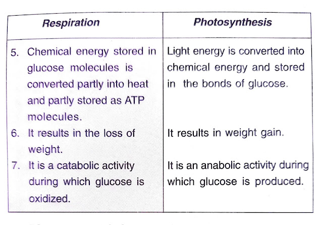 differences between respiration and photosynthesis
