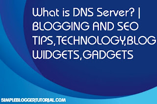 What is DNS Server?   BLOGGING AND SEO TIPS,TECHNOLOGY,BLOG WIDGETS,GADGETS