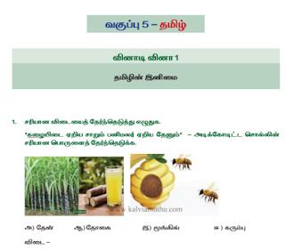 5th Tamil Basic Quiz Answer key