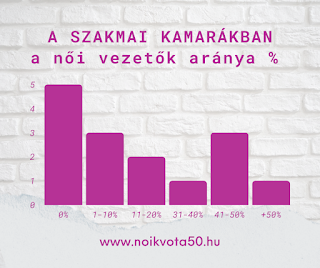 A szakmai kamarák vezetésében nincs női elnök - ELEMZÉS - #KE68