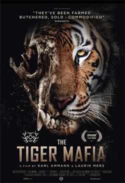 The Tiger Mafia (2021)