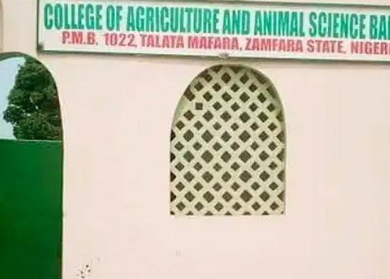 Provost of the college, Habibu Mainasara #momusicdate