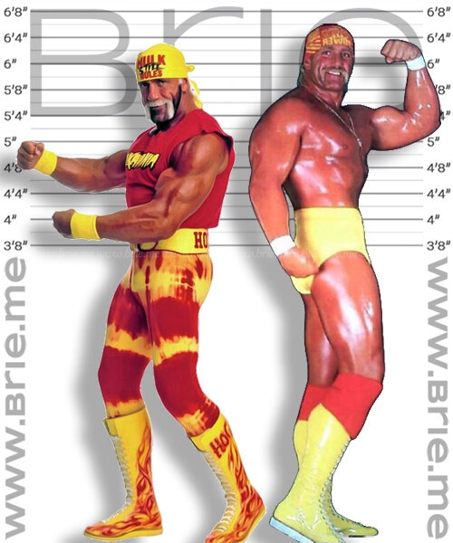 Young and Old Hulk Hogan height comparison