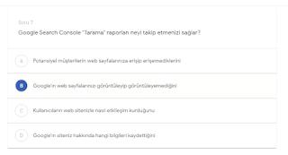 """Google Search Console """"Tarama"""" raporları neyi takip etmenizi sağlar? (B) Google'in web sayfalarınızı görüntüleyip görüntüleyemediğini"""