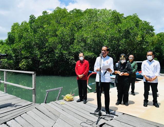 Jokowi Ingin Model Rehabilitasi Mangrove Ngurah Rai Direplikasi Provinsi Lain
